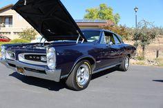 1966 GTO 67 Pontiac Gto, 67 Gto, Fancy Cars, General Motors, Le Mans, Hot Cars, Car Show, Muscle Cars, Goat