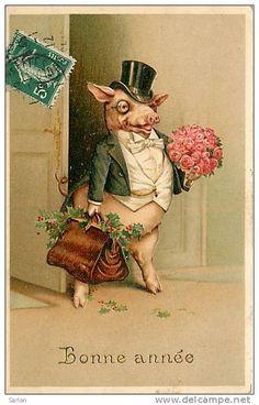 .Mr. Pig