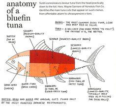 Bluefin+Tuna