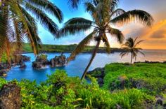 Best Budget Hotels in Maui