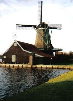 Moinho/Holanda