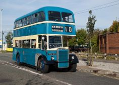 FBG 910  1959  Leyland PD2/Massey ..   Birkenhead Transport.  (Loved to ride on the blue buses when my uncle was the driver).
