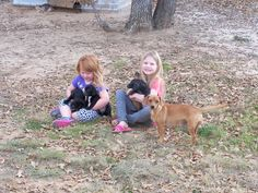 Sophia & Emily enjoying the new puppies! And yes we are keeping all 5 of them! www.laurenboehmlynch.com Life on The Broken Road Farm!