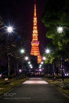 Popular on 500px : Street tree to Tokyo Tower by yam88229