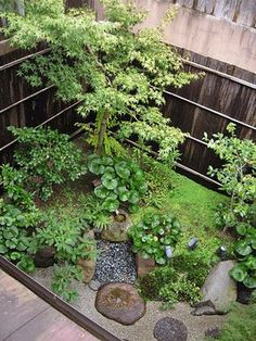 Beautiful girls gathered in Kyoto, Gion. Small Japanese Garden, Japanese Garden Design, Japanese Landscape, Japanese Gardens, Zen Garden Design, Landscape Design, Back Gardens, Small Gardens, Amazing Gardens