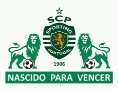 Portugal Football Team, Best Club, Image Fun, Scp, Soccer, Album, Stickers, Wallpaper, Lion Images