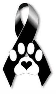 Animal Line Drawings, Cute Halloween Makeup, Dog Died, Yorkie, Chihuahua, Dog Heaven, Pumpkin Stencil, Pet Loss, Dog Memorial