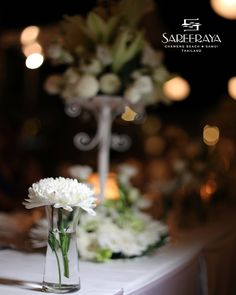 White single  Chrysanthemum in a Glass Vase.