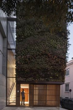 The scent of architecture: A house with a living wall, Lisbon Portugal.