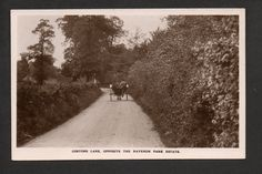 Costons Lane Ravenor Park Estate Greenford Nr Ealing RP pc unused Ref Ad Hoc, Beautiful Park, Vintage Antiques, Past, Country Roads, Spaces, Green, Image, Past Tense