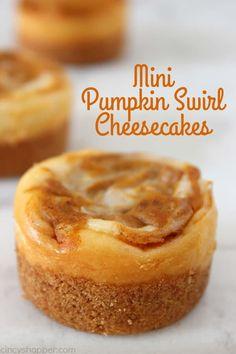 Mini Pumpkin Swirl Cheesecakes Fall Desserts, Just Desserts, Delicious Desserts, Dessert Recipes, Cheesecake Recipes, Cheesecake Cupcakes, Yummy Food, Raspberry Cheesecake, Cheesecake Bites