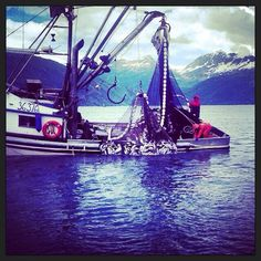Another great day in Prince William Sound! Photo Credit- Thomas Lopez