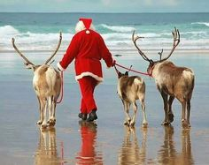 Christmas at the beach.