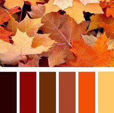 Sin lugar a dudas el naranja es el nuevo negro para nuestro Otoño - Invierno 15, definitivamente tiene nuestro voto de confianza. Es un ...