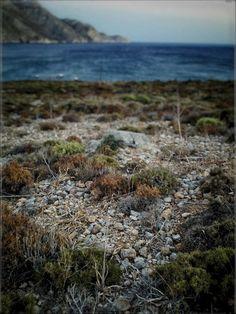 Eristo, land up the beach #τήλος #έριστος