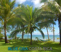 Blue Osa Retreat - Costa Rica