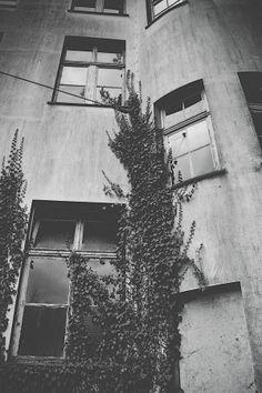 windows by Markus Meltzer on 500px