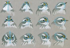 Win a Copy of 'The Laws Guide to Drawing Birds' | Audubon Magazine