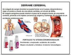 Los productos para prevenir o fortalecer  tu sistema cerebro vascular Mayor Información   Distribuidor Independiente Omnilife & Angelíssima  Manuel Crisanto Cel. 1  908 4473433 omnisolucion@gmail.com omnisolucion@hotmail.es
