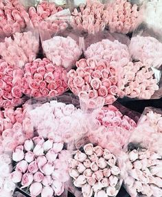 A dozen roses, bottled. Like thousands of petals from a bouquet of fresh cut ro… - Beautiful Flowers My Flower, Pretty In Pink, Beautiful Flowers, Unique Flowers, Beautiful Bouquets, Pink Love, Romantic Flowers, Beautiful Images, Hot Pink