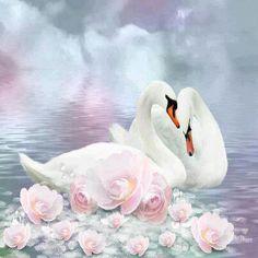 Diamond Embroidery Swan Pictures Of Rhinestones Diamond Mosaic Animals Swan Love, Beautiful Swan, Beautiful Birds, Beautiful Artwork, Cross Paintings, Your Paintings, Animal Paintings, Swan Pictures, Mosaic Pictures
