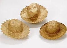 Pandanus lauhala leaves are woven into hats and may other things, an art form.