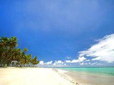 3º lugar - Praia dos Carneiros em Tamandaré, PE - A MELHOR ÉPOCA PARA VISITAR: Durante o ano todo
