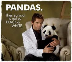 """I killed a panda."" ""A sweet, cuddly, vicious little panda.""  #TropicThunder"