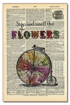 A vintage dictionary page turned into an interesting wall hanging. The pages are from dictionaries that are 100 years old. Smell The Flowers by Modern History Collection. Home & Gifts - Home Decor - Wall Art North Dakota
