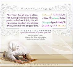 "قال رسول الله صلى الله عليه و سلم "" عليك بكثرة السجود فإنك لا تسجد لله سجدة إلا رفعك الله بها درجة وحط عنك بها خطيئة""  Messenger of Allah Muhammad ( ((peace and blessings of Allah be upon him)) ) says : ""Perform Salah more often. For every prostration that you perform before Allah, He will raise your position one degree and will remit one of your sins"". ISLAMIC #HADITH -Book of Prayers | Chapter: The Virtue Of Prostration  And Encouragcrneni To Do So"