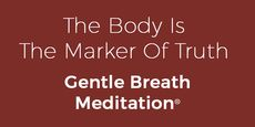 Developing the body as a marker of truth with this practical 15 minute Gentle Breath Meditation™ gives you a powerful reference for being able to say no to using stress and nervous energy to achieve. Meditation For Anxiety, Breathing Meditation, Free Meditation, Markers, Breathe, Stress, Sayings, Sharpies, Lyrics