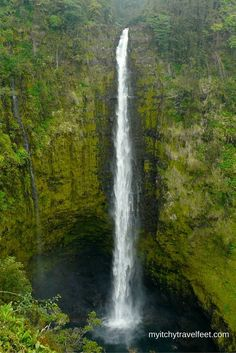 Tips for visiting Akaka Falls State Park on the island of Hawaii. You'll enjoy this easy walk with plenty of waterfall views on the Big Island. #boomertravel #hawaii #waterfall