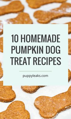 Looking for some yummy Halloween dog treats? Want an easy way to make your dog feel special this holiday? Here's 10 homemade pumpkin dog treat recipes. Dog Cookie Recipes, Easy Dog Treat Recipes, Homemade Dog Cookies, Dog Biscuit Recipes, Homemade Dog Food, Healthy Dog Treats, Dog Food Recipes, Doggie Treats, Pumpkin Dog Treats Homemade