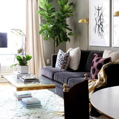 Living Room - Area Rug - Coffee Table - Small Spaces - Apartment Decor - Home Ideas