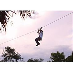ZOOm Air Adventure at Central Florida Zoo and Botanical Gardens Sanford, FL #Kids #Events