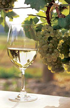How to Make White Wine