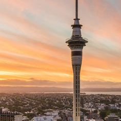 Journey up the Sky Tower to discover the biggest view in Auckland and two activities to challenge your sense of adventure - SkyWalk and SkyJump.