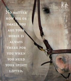 No matter how big or small you are your horse is always there for you when you need your spirit lifted.