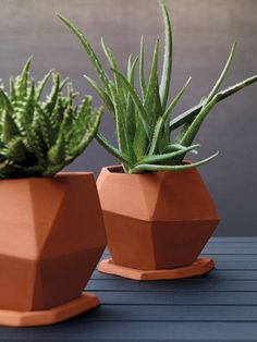 Great sculptural planters for cactus and succulents.