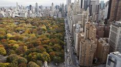 Skyscapers overlook Central Park on an autumn day