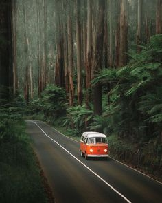 Bus Volkswagen, Vw T1, Volkswagen Transporter, Vw Camper, Beautiful Roads, Beautiful Forest, Beautiful Places, Wonderful Places, Places To Travel