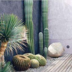 Revista Arquitetura e Construção - 35 jardins em áreas externas e internas