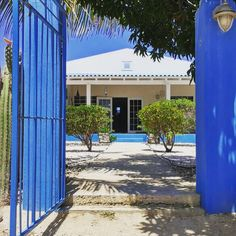 For rent in Bonaire Vacations, Caribbean, Sun, Outdoor Decor, Home Decor, Holidays, Decoration Home, Vacation, Room Decor