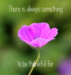 There is always something to be thankful for. http://mukthas.blogspot.nl