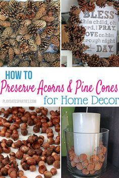 How to Preserve Pine Cones and Acorns for Decorating