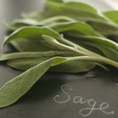 awesome sage seeds from @Laura Watt