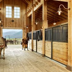 I would live with the horses if I had stables like that!!