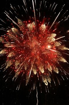 An actual photo of a prior year's Fourth of July celebration in Nashville, Tennessee. We love fireworks so much. Besides being beautiful, they remind me of my family, because my whole family would get together and work at my uncle's fireworks stands. 4th Of July Fireworks, Fourth Of July, Firework Stands, Burning City, Fire Works, Sparklers, Independence Day, V For Vendetta, Beautiful Pictures