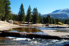 The John Muir Trail crosses the Lyell Fork of the Tuolumne River not far south of Tuolumne Meadows. Sequoia National Park, National Parks, Tuolumne Meadows, Mount Whitney, John Muir Trail, Yosemite Valley, Sierra Nevada, Hiking, Fork