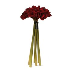 Discover the Herve Gambs Red Amaryllis Bouquet at Amara